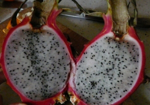Fruit du Dragon (Vietnam)