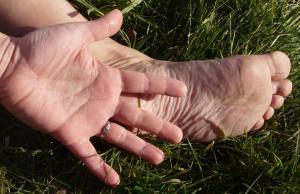 reflexologie Flavie Dode Naturopathie