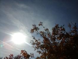 soleil_automne Flavie Dode Naturopathie Réflexologies Bien-être