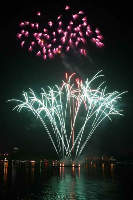 NewYear Bonnes fêtes Flavie Dode Naturopathie