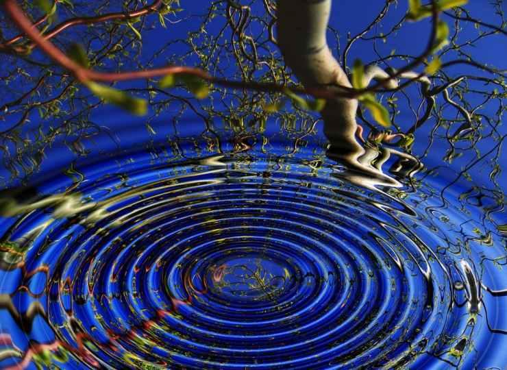 Flavie Dode Naturopathie Réflexologies Bien-être Reiki soins énergétiques
