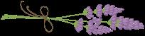Flavie Dode Naturopathie Réflexologies Bien-être logo lavande horizon png