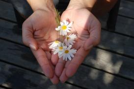 Mains Don Flavie Dode Naturopathie Réflexologies Bien-être